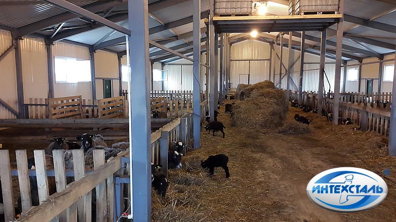 Как сделать загон для овцы 26